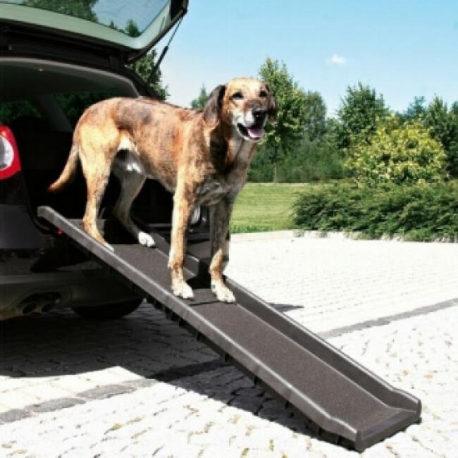 Rampe d'accès pliable pour animaux 155 cm x 40 cm Trixie