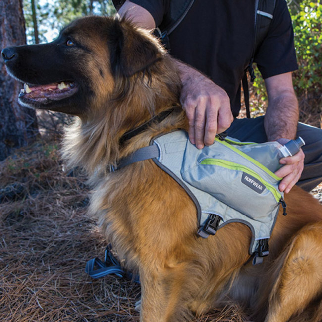 Sac à dos sport Singletrak pour chien