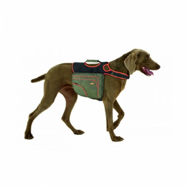 Sac d'activité multifonctions Authentic Dog pour chien Karlie