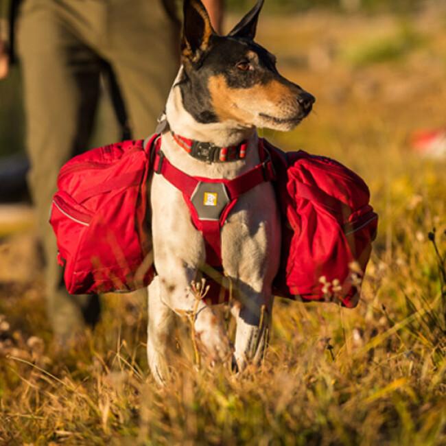 Sac de bât Palisades Pack Ruffwear pour chien