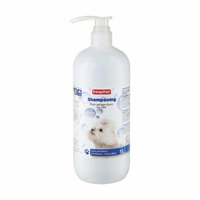 Shampoing colorant poils blancs et gris Béaphar pour chien et chat