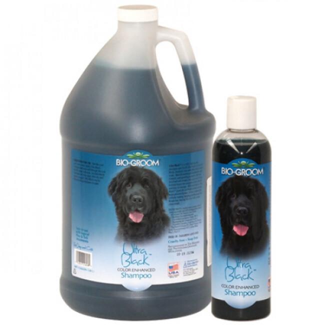 Shampoing Bio Groom colorant Ultra Black pour poil noir de chien et chat