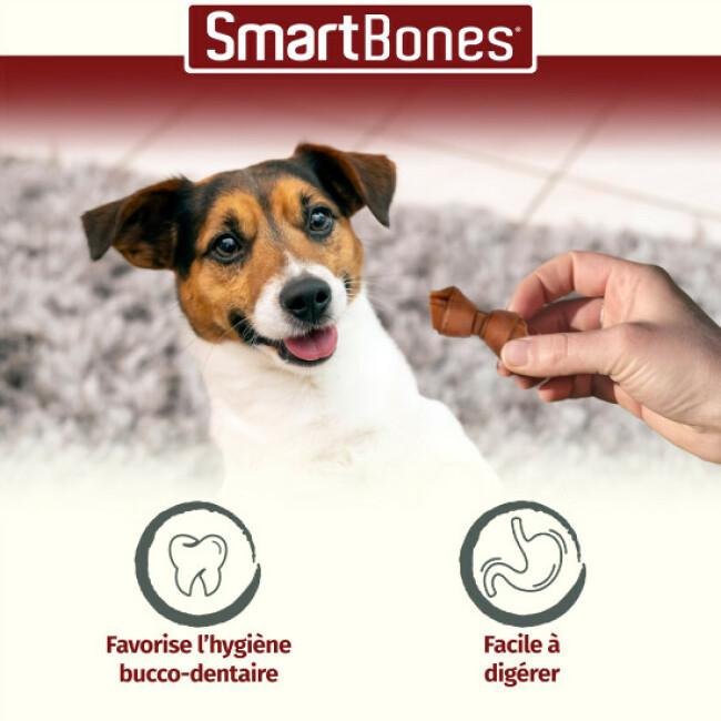 SmartBones os à mâcher au bœuf