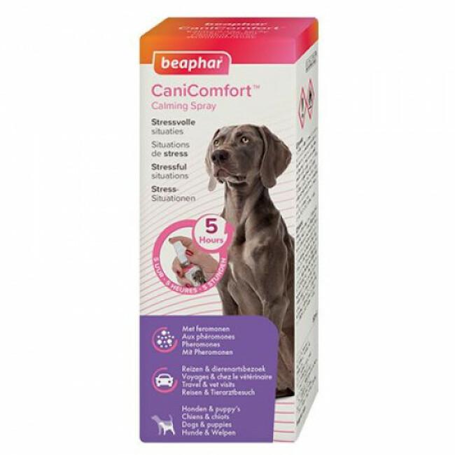 Spray calmant CaniComfort aux phéromones pour chien et chiot