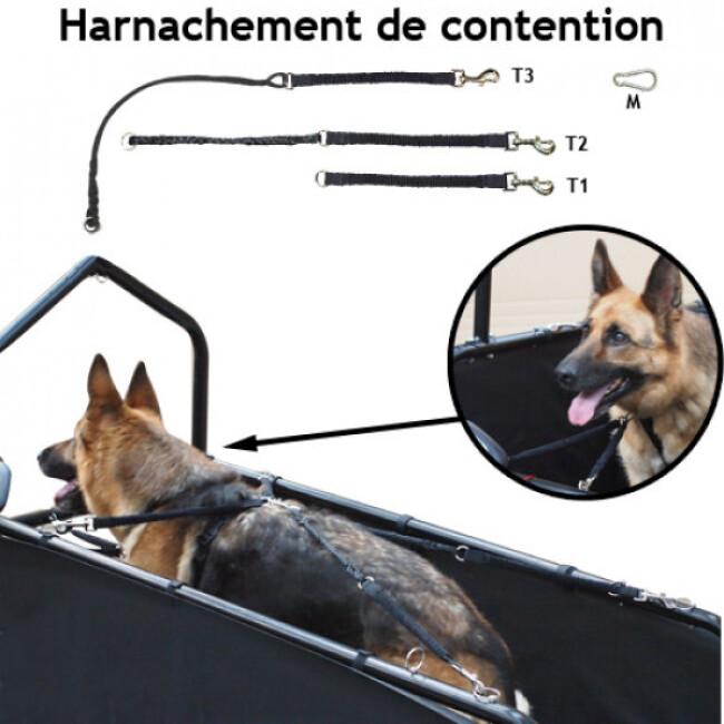 Tapis roulant Canis-Tapis ® CT201P entrainement et rééducation pour chien