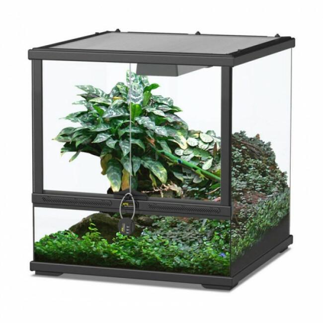 Terratlantis : Terrarium Smart Line 45 - 45 x 45 x 45 cm