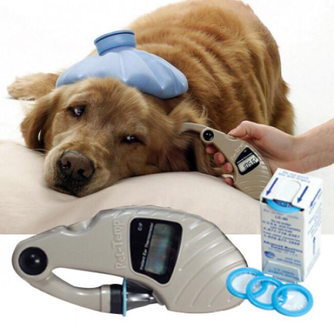 Thermomètre auriculaire EAR PT-300 pour chien et chat
