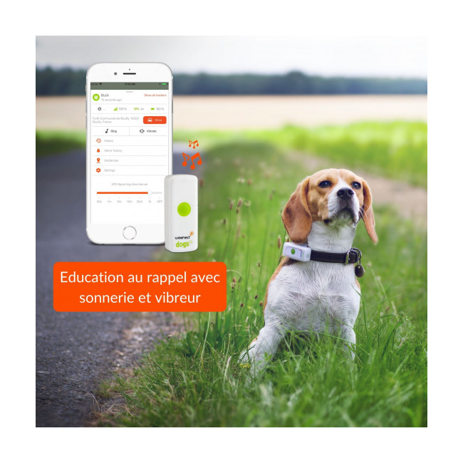 Traceur GPS pour chien Weenect Dogs 2
