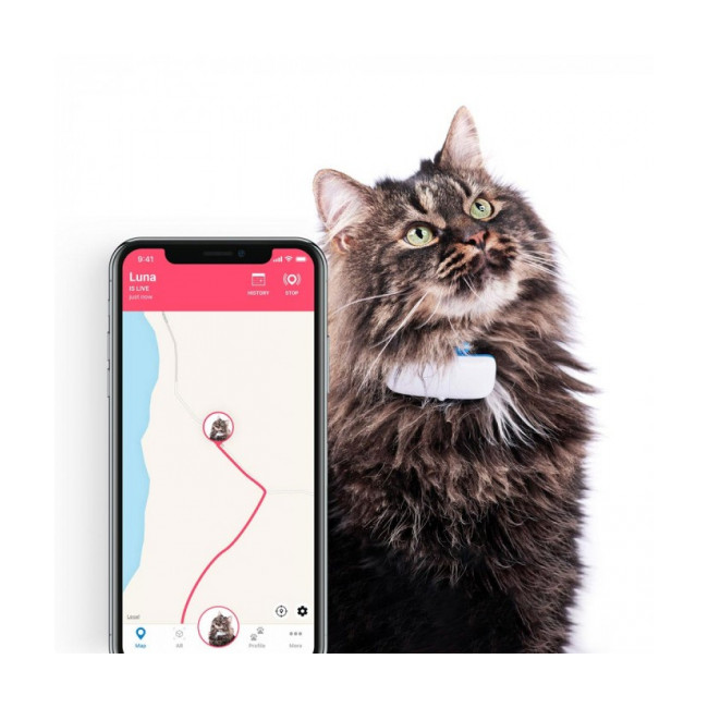 Traceur GPS suivi d'activité Tractive pour chat