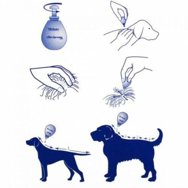 Traitement pour chien et chat Allerderm Spot On Virbac