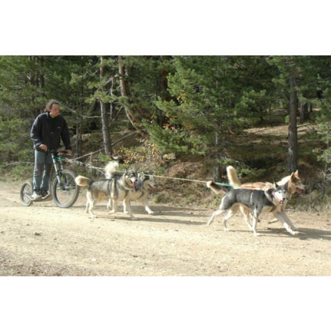 Trottinette pour mushing M10 pour un ou deux chiens