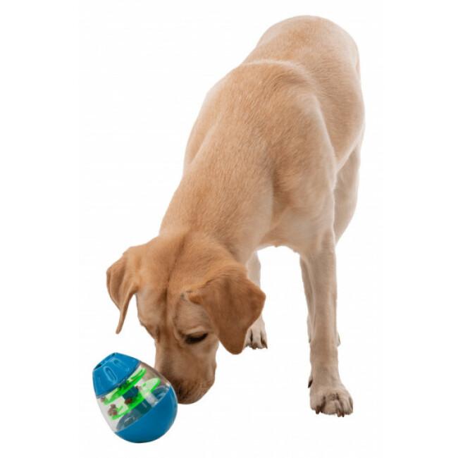 Œuf friandises culbuto pour chien