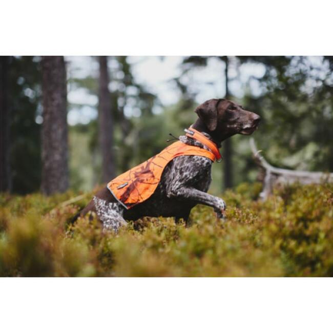 Veste de chasse camouflage pour chien Camo NON-STOP Dogwear