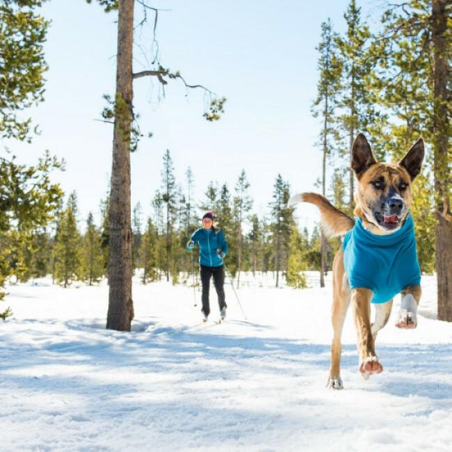 Veste polaire Ruffwear Climate Changer pour chien