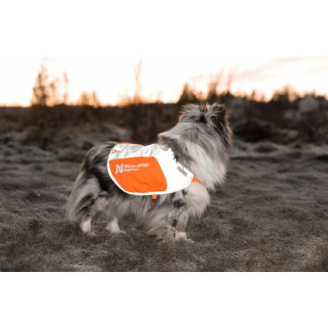 Veste réfléchissante pour chien NON-STOP Dogwear