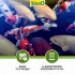 Image 8 - Alimentation Tetra Pond Koï Sticks pour poissons de bassin