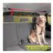 Image 1 - Attache trolley de sécurité automobile pour chien Trolcar™
