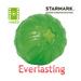 Image 1 - Balle Everlasting très résistante pour chien
