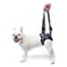 Image 4 - Baudrier de maintien pour chien handicapé Confort Speed