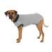 Image 1 - Body de protection gris pour chien Trixie