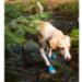 Image 8 - Bottine de sport Ruffwear Grip Trex pour chien