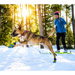 Image 5 - Bottine Polar-Trex V2 Ruffwear sur sol humide pour chien