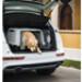 Image 3 - Cage Gulliver Touring transport en avion et automobile pour chien