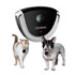 Image 3 - Caméra Eyenimal Vidéocam Petcam pour chien et chat