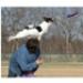 Image 3 - Canifrisbee frisbee Easy Glider en mousse technologique pour chien