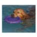Image 5 - Canifrisbee frisbee Easy Glider en mousse technologique pour chien