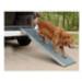 Image 5 - Canis-Rampe ™ aluminium / plastique pour chien handicapé