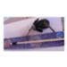 Image 2 - Canne à pêche jouet pour chat Cat Jeans