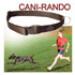 Image 2 - Ceinture coureur avec chien Canicross