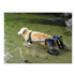 Image 9 - Chariot Cani-Cart Liberty ® Walkin Wheels pour chiens handicapés ou paralysés