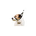 Image 3 - Collier licol Canny Collar pour chien
