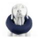 Image 5 - Collier lune protection gonflable Carcan anti léchage pour chien et chat