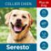 Image 6 - Collier Seresto Anti-puces et tiques pour chien