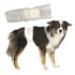 Image 1 - Couche d'incontinence jetable pour fuite urinaire du chien mâle