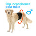 Image 1 - Culotte d'incontinence et fuite urinaire pour chien mâle