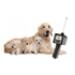 Image 3 - Détecteur de chaleur pour chienne nouvelle génération Draminski DOD2