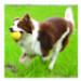 Image 2 - Fantastic Foam Ball pour chien