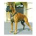 Image 1 - Harnais pour empêcher le chien de tirer Sympa Dog