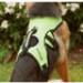 Image 7 - Harnais d'assistance Kn'1 Active Grip pour chien