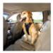 Image 3 - Harnais de sécurité pour la voiture avec attache ceinture de sécurité Tru-Fit Smart Harness