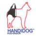 Image 1 - Harnais Handidog ™ postérieur pour chien handicapé