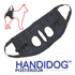 Image 4 - Harnais Handidog ™ postérieur pour chien handicapé