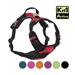 Image 4 - Harnais multifonction Kn'1 Active Drive pour chien