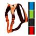Image 6 - Harnais sport cross TXArtSportiv pour cani-rando et cani-jogging