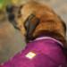 Image 8 - Imperméable Sun Shower 2 Ruffwear pour chien