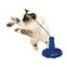 Image 2 - Jeu éducatif pour chat Raptor